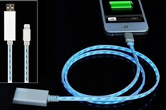Visible LED Light 8 Pin USB Charger Cable for iPhone 5 iPod iPad