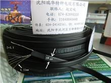 太陽能熱水器專用配套電伴熱帶電纜