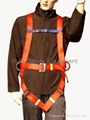 Safety Harness 2