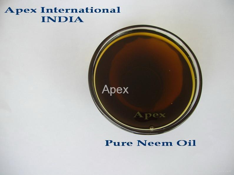 Neem Oil 1