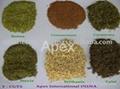 Herbs- T Cut (Tea Bag Cut)