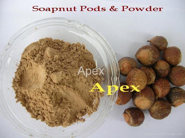 Soap nut Pods & Soap nut Powder 1