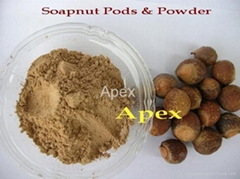 Soap nut Pods & Soap nut Powder