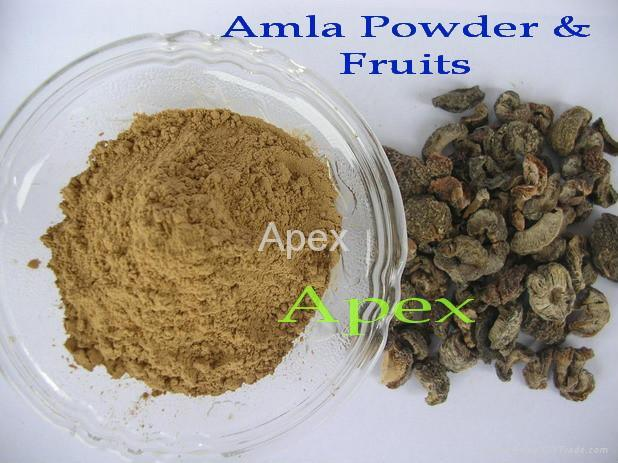 Amla dry Fruit & Amla Powder 1