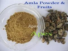 Amla dry Fruit & Amla Powder