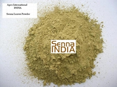 Senna Leaf  Powder , Senna Powder