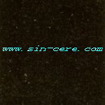 Aboslute Black Granite Flooring