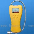 GPT100 gas detector