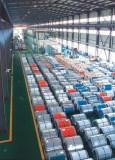Prepainted Steel Coil (PP-XR1)