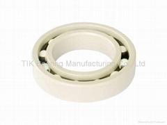 Full ceramic bearing