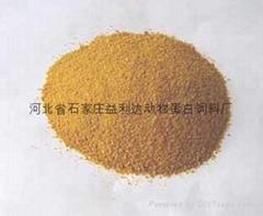 中国石家庄肉骨粉饲料原料