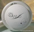 Stand-Alone Ionization Smoke Detector