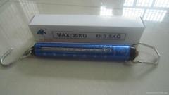 30KG/50KG管型吊秤