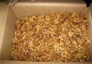 walnut kernel 5
