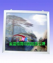 china packing print factory 3d picture/pet box/pvc bag/