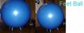 fitness ball 1
