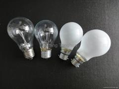 A19 100W Clear Bulb