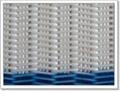 Polyester Spiral Fabrics