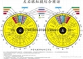 iridology chart(iridology eye chart)