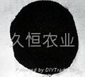 腐植酸原粉(風化煤)