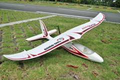 Sell 4CH 2.4GHz Radio Controlled Beginner RTF Airplanes Glider ES9909