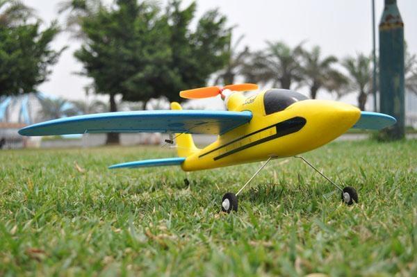 "Remote Control Sport Plane ""Dolphin Glider"" 2.4 G 4ch Brushless EPO RTF(ES9902A) 2"