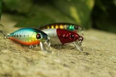 suspending fishing lures