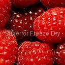 FD Raspberry