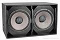 Professional Subwoofer loudspeaker system(FSD-218)