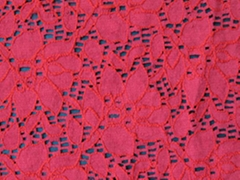 Raschel Lace Fabric