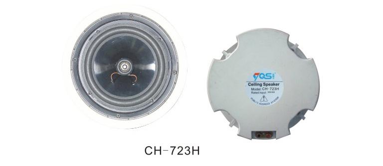 Ceiling Speaker 1