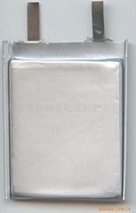 锂聚合物电池