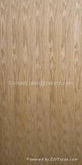 Veneer Door Skin CA-V17