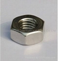 M12 stainless steel nuts