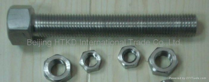 AISI 304,316 stainless steel bolts 1