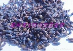 燻衣草(深藍07(特、1、2))級