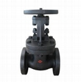 ANSI 250 Rising Stem Gate Valve
