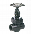 Class 150-1500 Forged Steel Gate Valve
