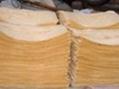 豆制品专用防腐保鲜剂 3