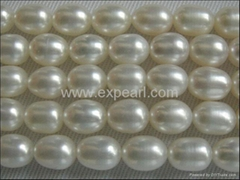 Loose Freshwater Pearl Strand