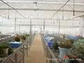 加濕降溫設備 畜牧消毒 2