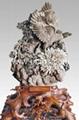 菊花石 1