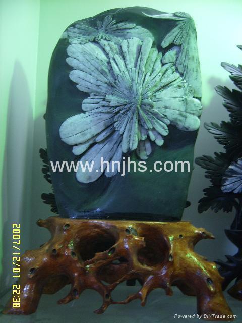 菊花石 2