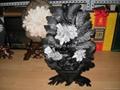 菊花石 3