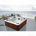 SPA,Hot tub,Out door T-3322