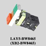 Pushbutton Switch (XB2-BW8465)