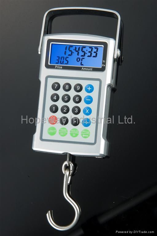 Digital Hanging Scale, Fishing Scale Hook Scale 1