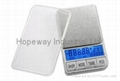 Digital scale with dual display