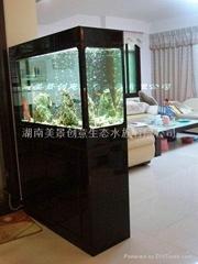 供应创意明典CY-GS免换水生态水族箱 生态鱼缸