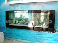 供应创意明典CY-BG壁挂免换水生态水族箱 生态鱼缸